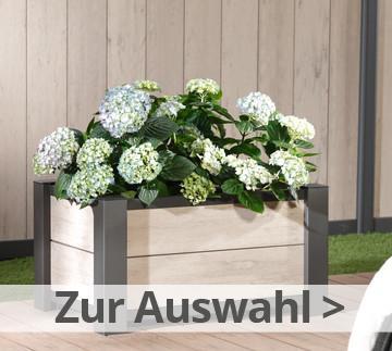 ambiente sonnenschutz sichtschutz und sch nes f r garten terrasse balkon. Black Bedroom Furniture Sets. Home Design Ideas