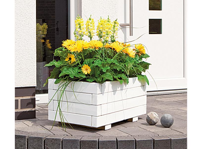 TraumGarten Pflanzkasten Cora Viereck Nadelholz kdi - 60 x 60 x 38 cm